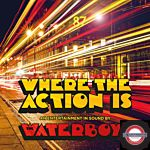 The Waterboys - Where The Action Is (LP)