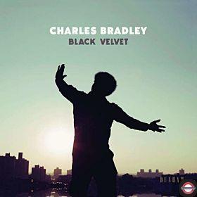 CHARLES BRADLEY — Black Velvet